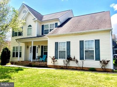 Warrenton Single Family Home For Sale: 254 Breezewood Drive