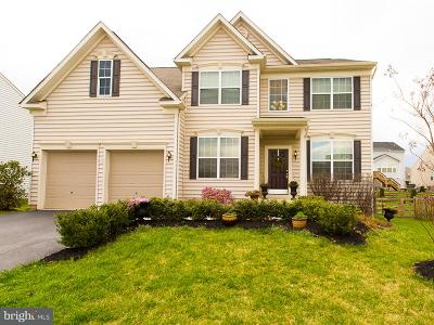 Loudoun County Single Family Home For Sale: 16874 Evening Star Drive