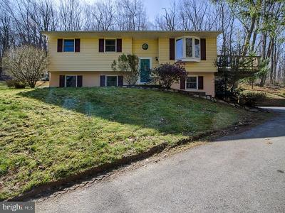 Westminster Single Family Home For Sale: 607 East Deep Run Road