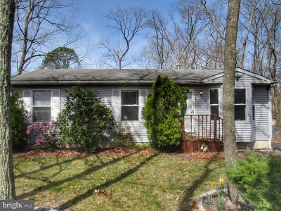 Millville Single Family Home For Sale: 333 Olive Road