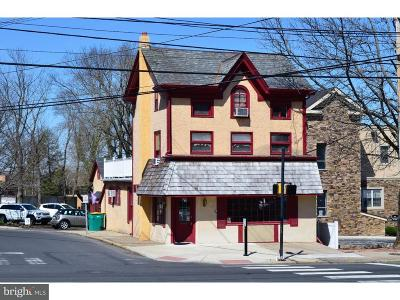 Bucks County Commercial For Sale: 224 N Main Street