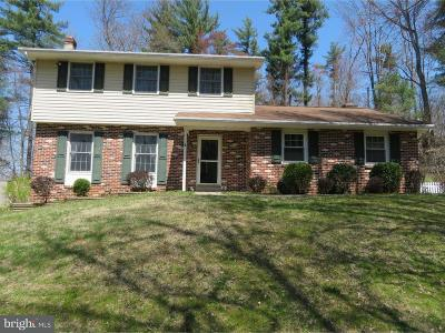 Downingtown Single Family Home For Sale: 740 Dorlan Mill Road
