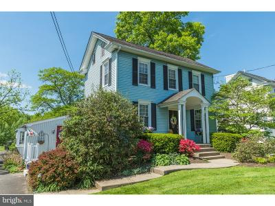 Pineville PA Single Family Home For Sale: $530,000