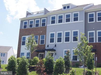 Edgewater Townhouse For Sale: 312 Bright Light Court