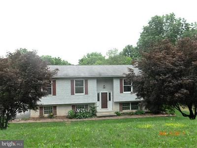 Parkesburg Single Family Home For Sale: 42 Friendship Way