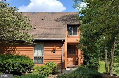 Hedgesville Townhouse For Sale: 224 Tecumseh Trail