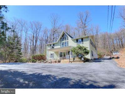 Single Family Home For Sale: 1042 State Road