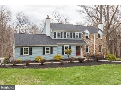 Chester County Single Family Home For Sale: 11 Mill Creek Lane