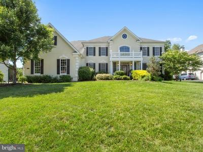 Fauquier County Single Family Home For Sale: 4435 Corral Road