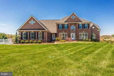Carroll County Single Family Home For Sale: 3300 Grayling Drive