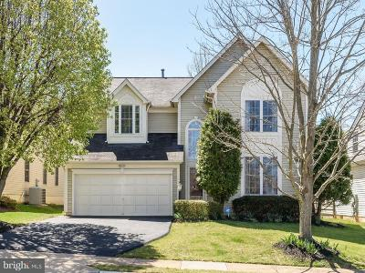 Sterling Single Family Home For Sale: 46851 Willowood Place