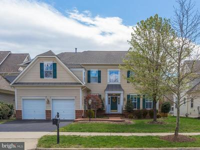 Leesburg Single Family Home For Sale: 44117 Riverpoint Drive