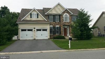 Hagerstown Single Family Home For Sale: 13618 Cambridge Drive