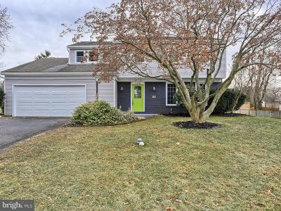 Landisville Single Family Home For Sale: 733 Southview Drive
