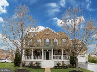 Leesburg Single Family Home For Sale: 21098 Hooded Crow Drive