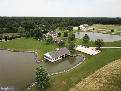 Cambridge, Church Creek, Crapo, Crocheron, East New Market, Federalsburg, Fishing Creek, Galestown, Hoopersville, Hurlock, Linkwood, Madison, Rhodesdale, Seaford, Secretary, Sharptown, Taylors Island, Toddville, Vienna, Wingate, Woolford Farm For Sale: 964 Taylors Island Road