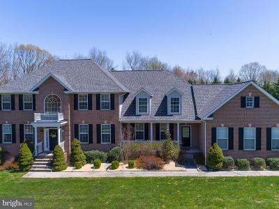 Charles County Single Family Home For Sale: 6722 Caddis Place