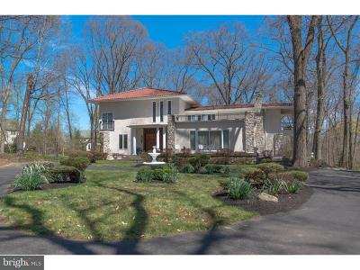Newtown Single Family Home For Sale: 20 Skoures Lane