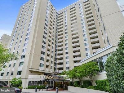 Chevy Chase Condo For Sale: 4601 N Park Avenue #109