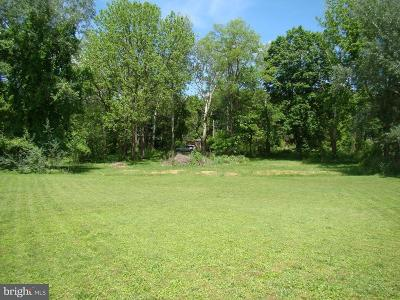 Residential Lots & Land For Sale: 17 Wallace Alley