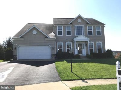 Dillsburg Single Family Home For Sale: 103 Graystone Court