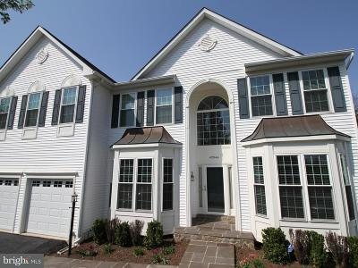 Ashburn Farm Single Family Home For Sale: 42944 Deer Chase Place