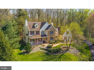Chadds Ford Single Family Home For Sale: 1710 Hickory Hill Road