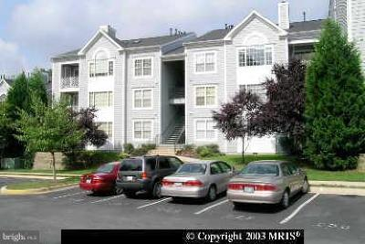 Fairfax County, Fairfax City, Loudoun County, Montgomery County, Prince George County, Prince William County, Frederick County, Fredericksburg City Condo For Sale: 20406 Shore Harbour Drive #4-J