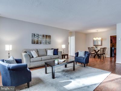 Fairfax County, Fairfax City, Loudoun County, Montgomery County, Prince George County, Prince William County, Frederick County, Fredericksburg City Condo For Sale: 4242 East West Highway #419