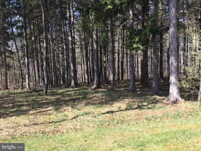 Residential Lots & Land For Sale: 23 Holy Cross Drive