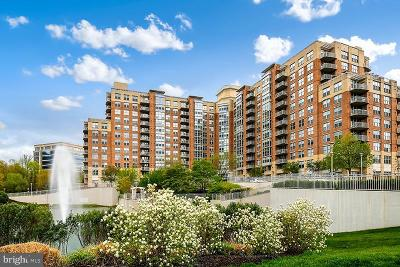 Fairfax County, Fairfax City, Loudoun County, Montgomery County, Prince George County, Prince William County, Frederick County, Fredericksburg City Condo For Sale: 11800 Sunset Hills Road #617
