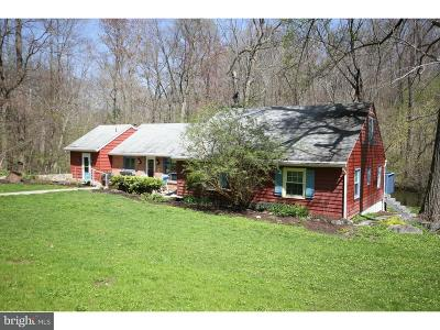Spring City Single Family Home For Sale: 191 Cooks Glen Road