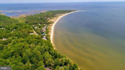 Lusby Single Family Home For Sale: 11314 Bay Front Avenue