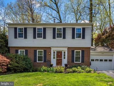 Falls Church Single Family Home For Sale: 7609 Virginia Lane
