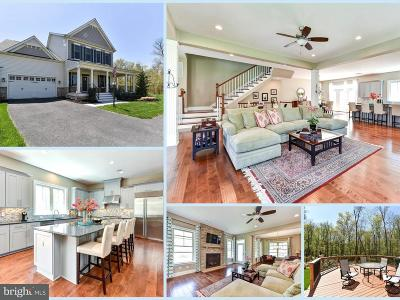 Aldie Single Family Home For Sale: 24826 Barrington Grove Court