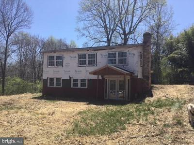 Rappahannock County Single Family Home For Sale: 618 Aaron Mountain Road