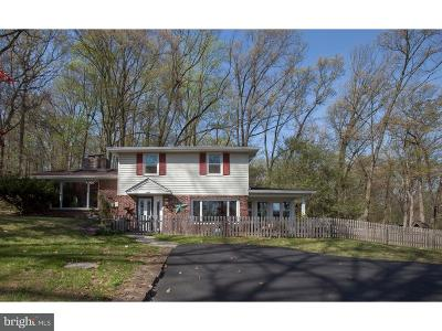 Bucks County Single Family Home For Sale: 2945 Swamp Road