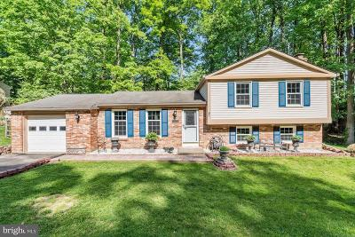 Fairfax County Single Family Home For Sale: 8483 Falling Leaf Road