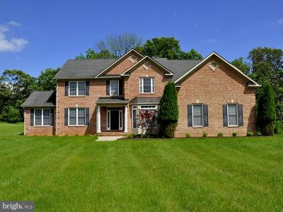 Myersville Single Family Home For Sale: 11327 Pleasant Walk Road