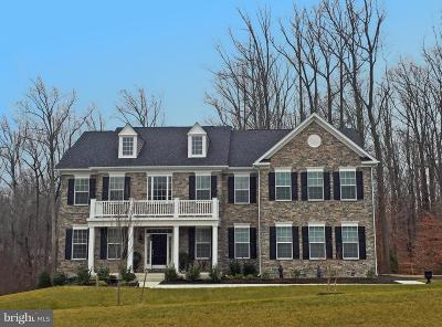 Howard County Single Family Home For Sale: Open Space Court