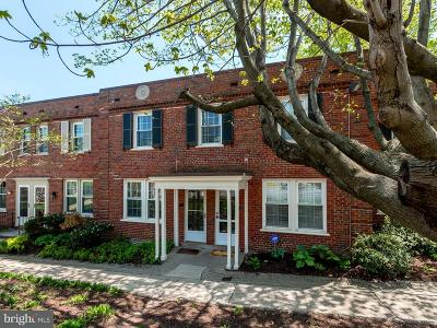 Arlington Townhouse For Sale: 2700 13th Road S #382