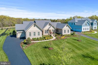 Ashburn Single Family Home For Sale: 23039 Welbourne Walk Court