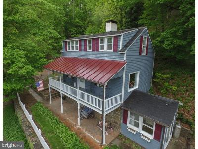 Pipersville Single Family Home For Sale: 517 River Road