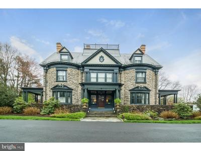 Single Family Home For Sale: 124 W Chestnut Hill Avenue