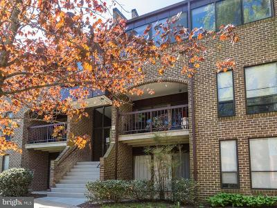 Reston Single Family Home Active Under Contract: 11216 Chestnut Grove Square #217