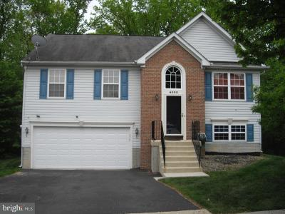 District Heights Single Family Home For Sale: 6500 Walters Place