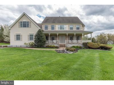 Hopewell Single Family Home For Sale: 10 Ringos Mill Road
