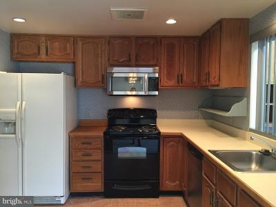 Chesterbrook Rental For Rent: 1405 Mountain View Drive