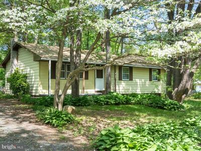Chestertown Single Family Home For Sale: 221 Dutchess Road