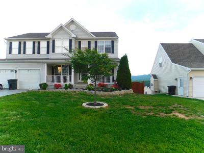 Single Family Home For Sale: 163 Aden Drive